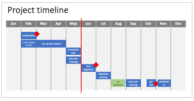 Project timeline presented during a steering committee meeting.